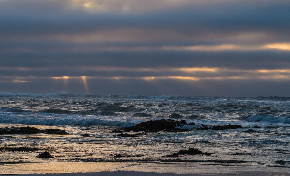 coast waves-ContactPage
